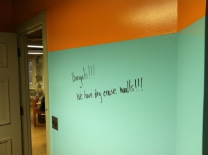 Dear Dry Erase wall paint. Please do not make me regret taking a chance on you!